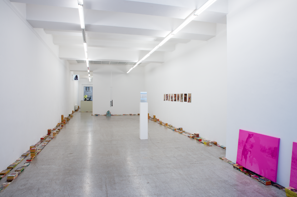 Exhibition View, Cartoon Physics, curated by_Chris Fitzpatrick, 2015, Galerie Kerstin Engholm, Photo: Stefan Lux