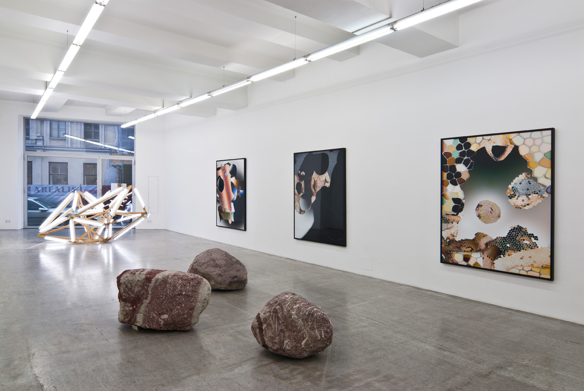 Exhibition View, Kerstin Engholm Galerie, Cosmology, Aesthetics, and Anthropy, curated by_John Christoph Doswald, 2012, Photo: Kerstin Engholm Galerie