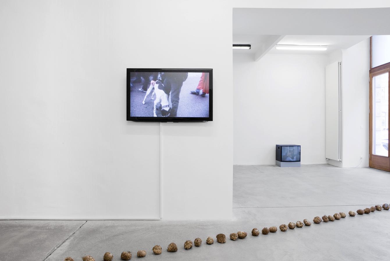 Exhibition View, Galerie Martin Janda, Fade Up / Flash Back, curated by_Silvia Eiblmayr, 2011, Photo: Aleksandra Krawa