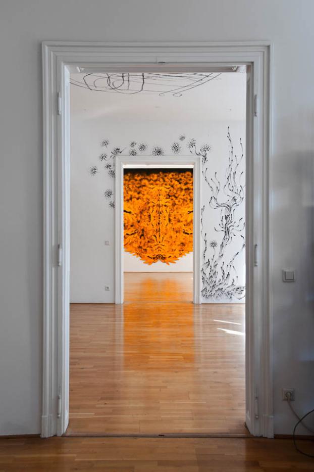 Exhibition View, what about this, curated by_Raimundas Malašauskas, 2011, Photo: Karl Kühn