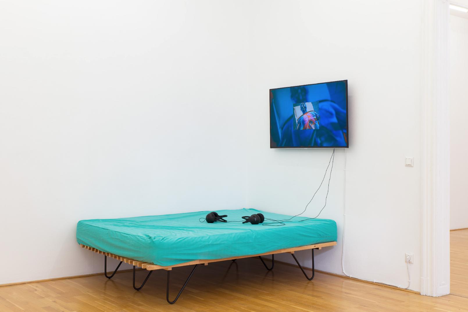 curated by_Rózsa Zita Farkas, Sidsel Meineche Hansen - exhibition view, Galerie Andreas Huber, Vienna, 11.9.20151. – 7.11.2015, Photo: Stefan Lux