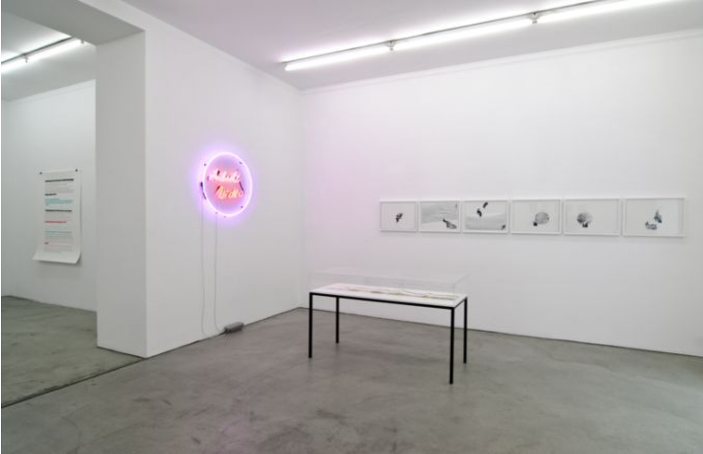 Exhibition View, Gabriele Senn Galerie, You're scripted, curated by_Marko Lulic, 2010, Photo: Gabriele Senn Galerie