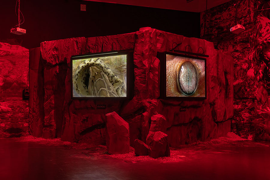 Adcredo – The deep belief network 2018  Joey Holder  Installation Courtesy of the artist