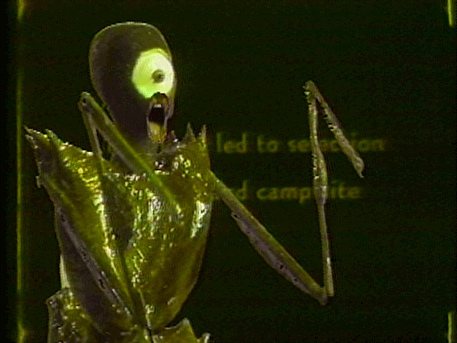 I Want Some Insecticide 1986 Branda Miller  Single-channel, B&W and colour video, sound, 3:53 min Video still courtesy of Branda Miller and Electronic Arts Intermix (EAI), New York