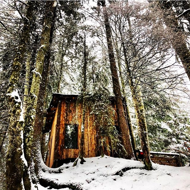 A secret hideaway down in the woods below La Ferme ❄️🌲❄️🌲❄️ 📸@louby_faure