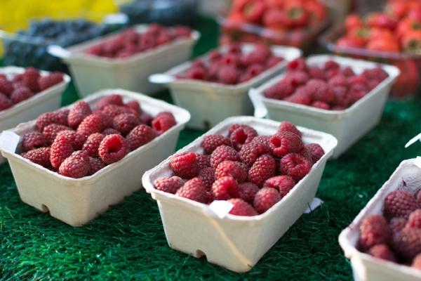 raspberries for metabolism boosting