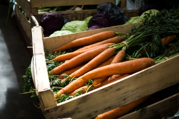 carrots for metabolism boosting and weight loss