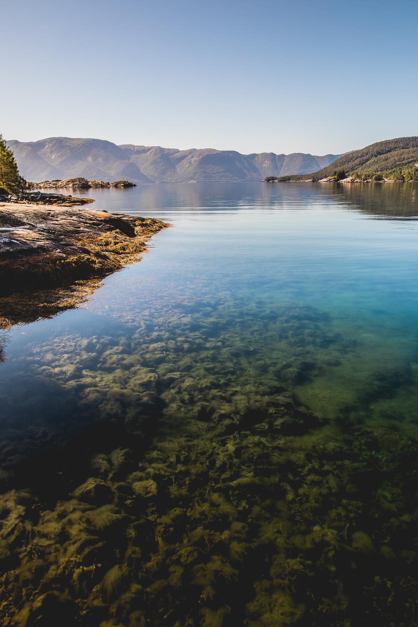 SamAllard_Norway_-012.jpg
