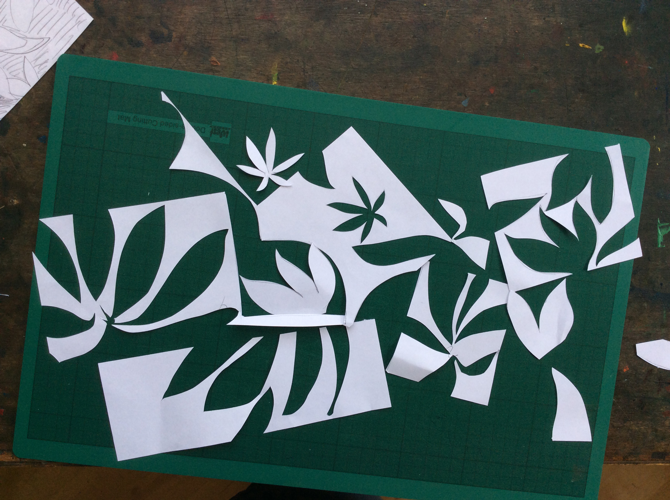 more-cuts.jpg