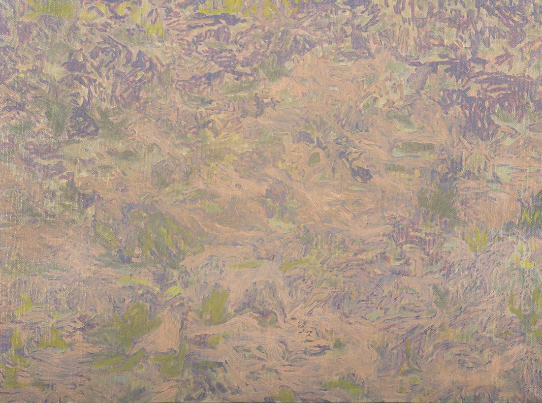 6. Desert Floor, 1990.jpg