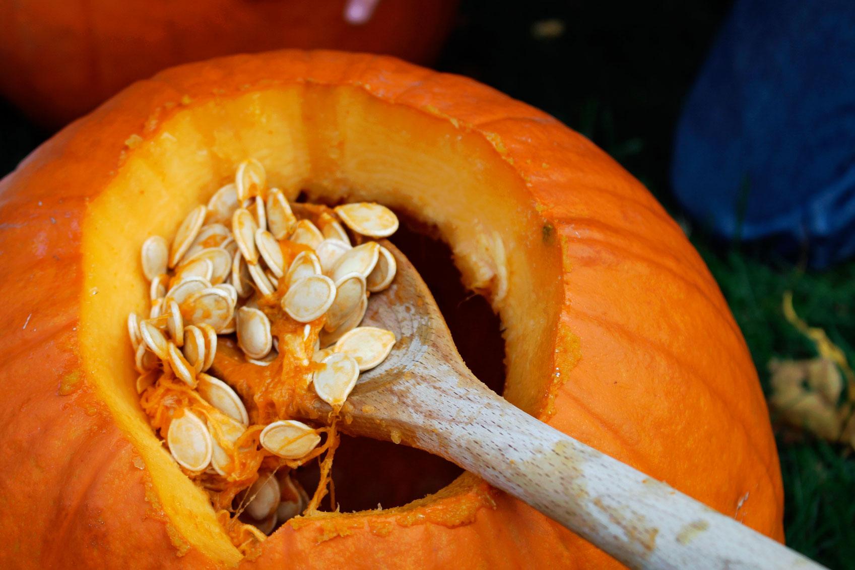 pumpkin-seeds-main.jpg