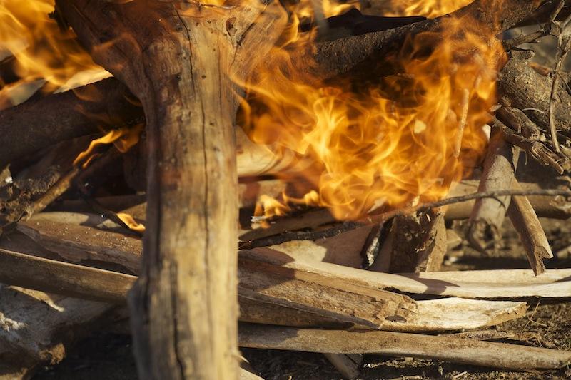 13-bones burning.jpeg