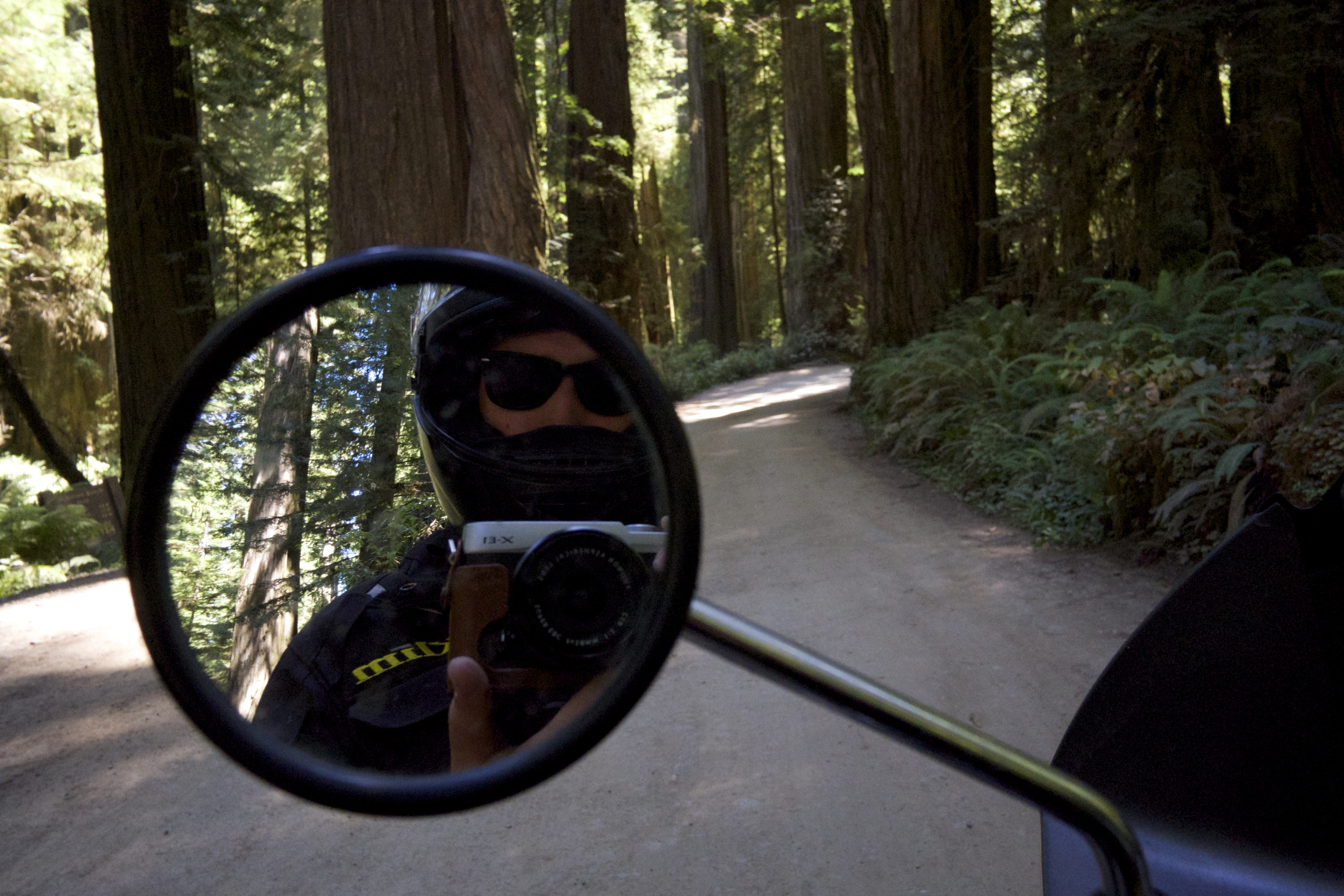Australian Alistair Farland exploring the Muir Woods, CA.  ( Read more about Alistair  HERE .)