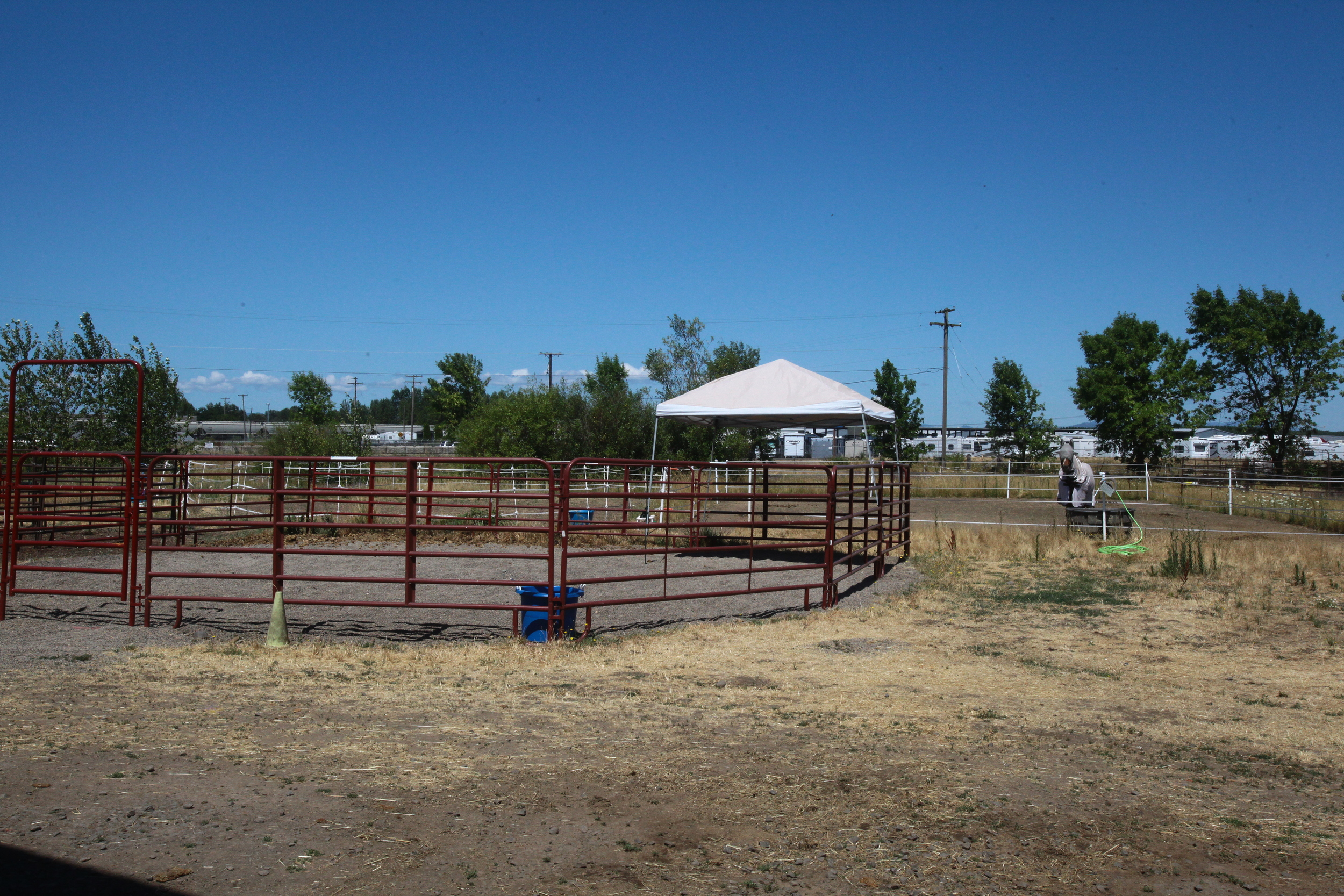 Round Pens and Turn Outs.JPG