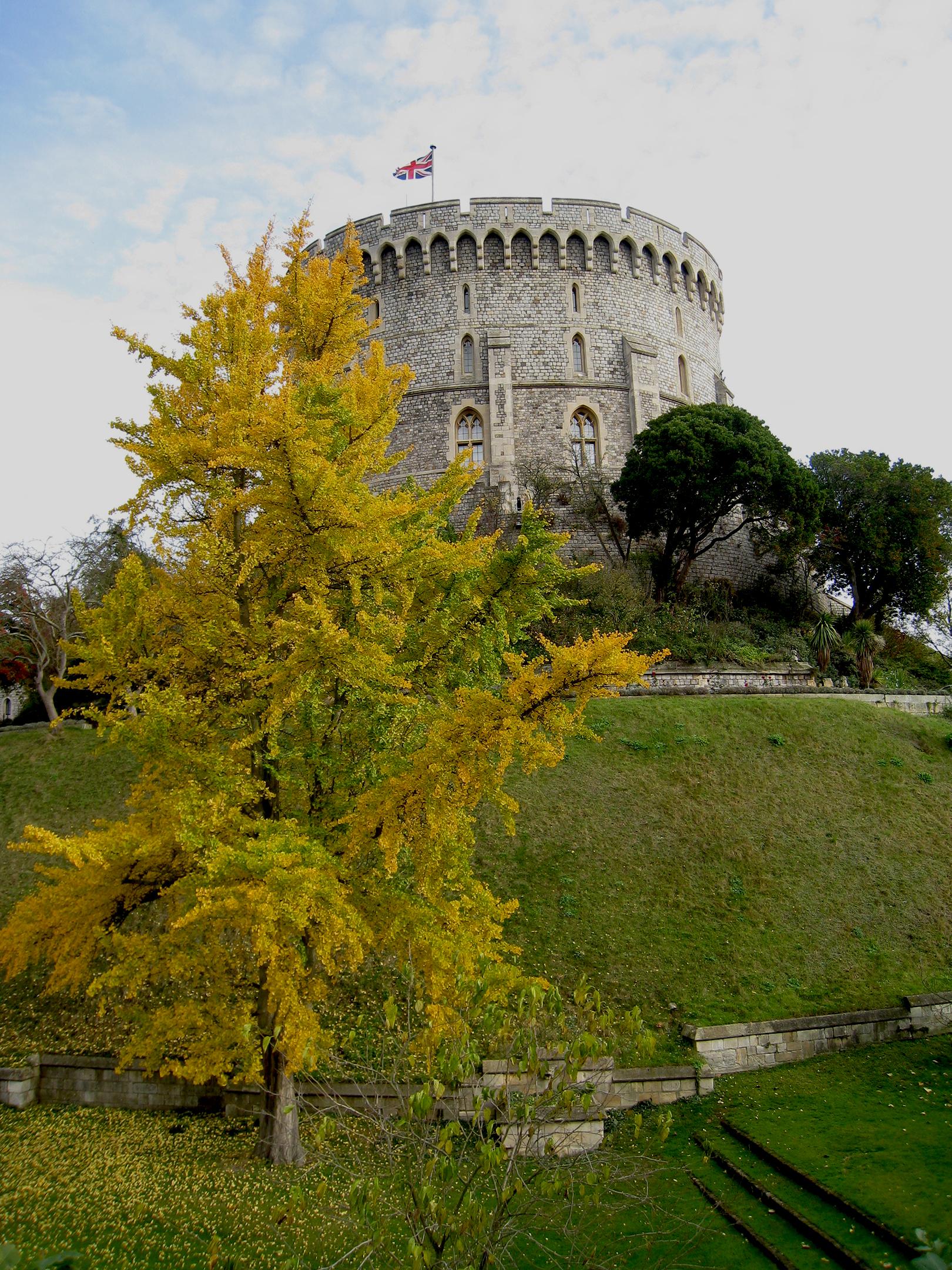 Windsor / England