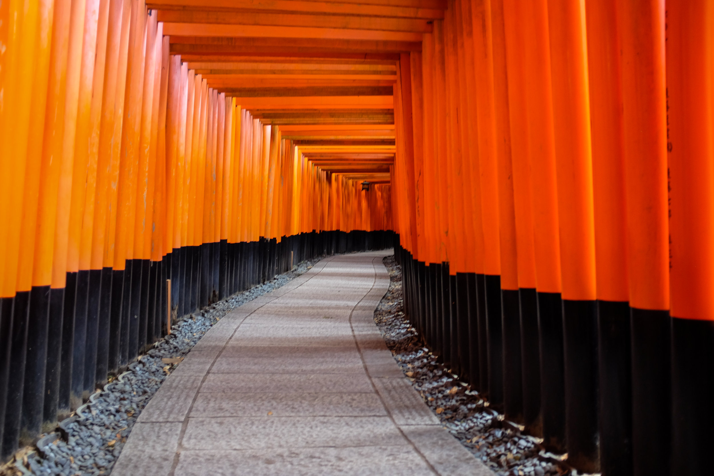 Fushimi Inari-taisha / Kyoto / Japan