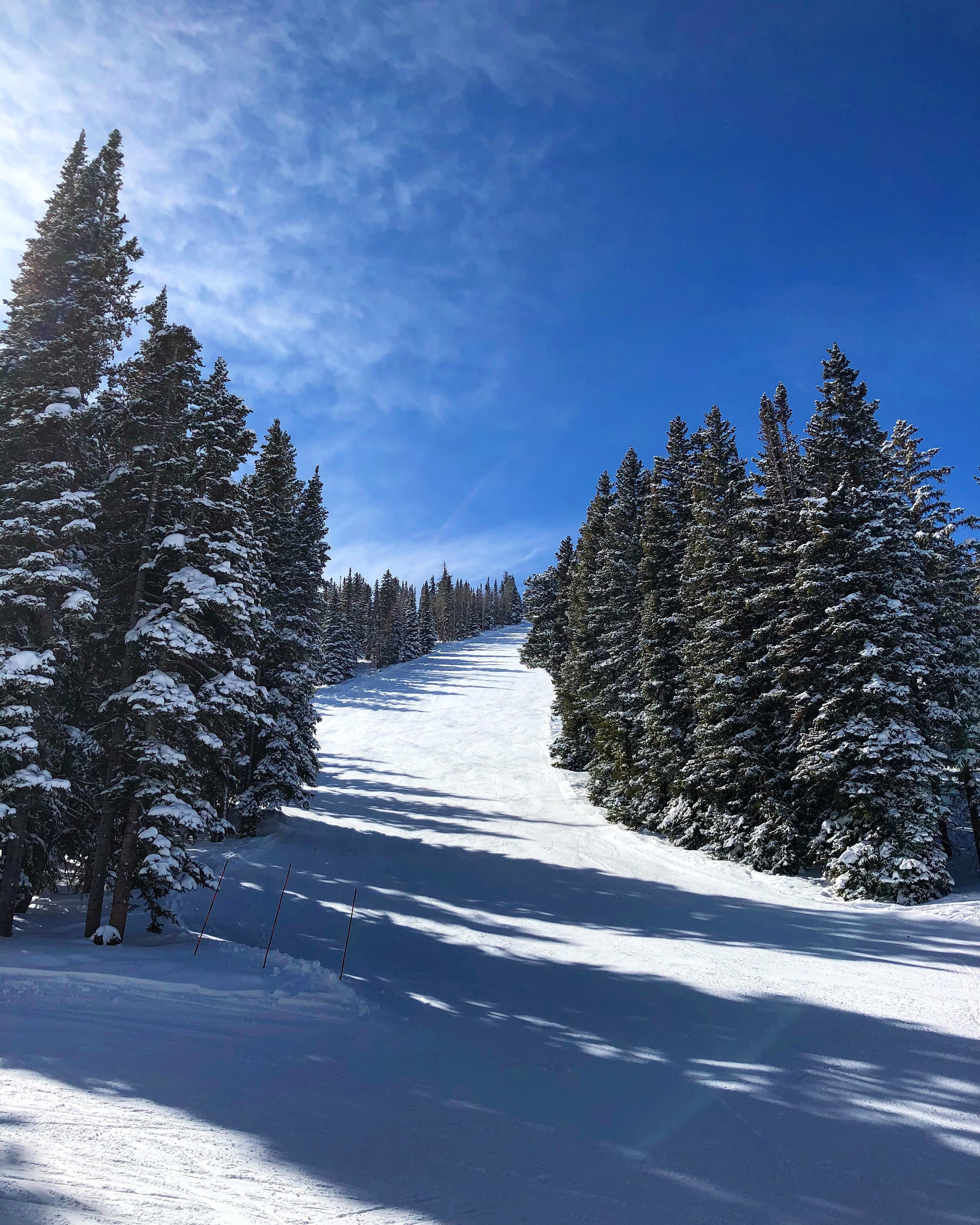 Aspen / Colorado / USA