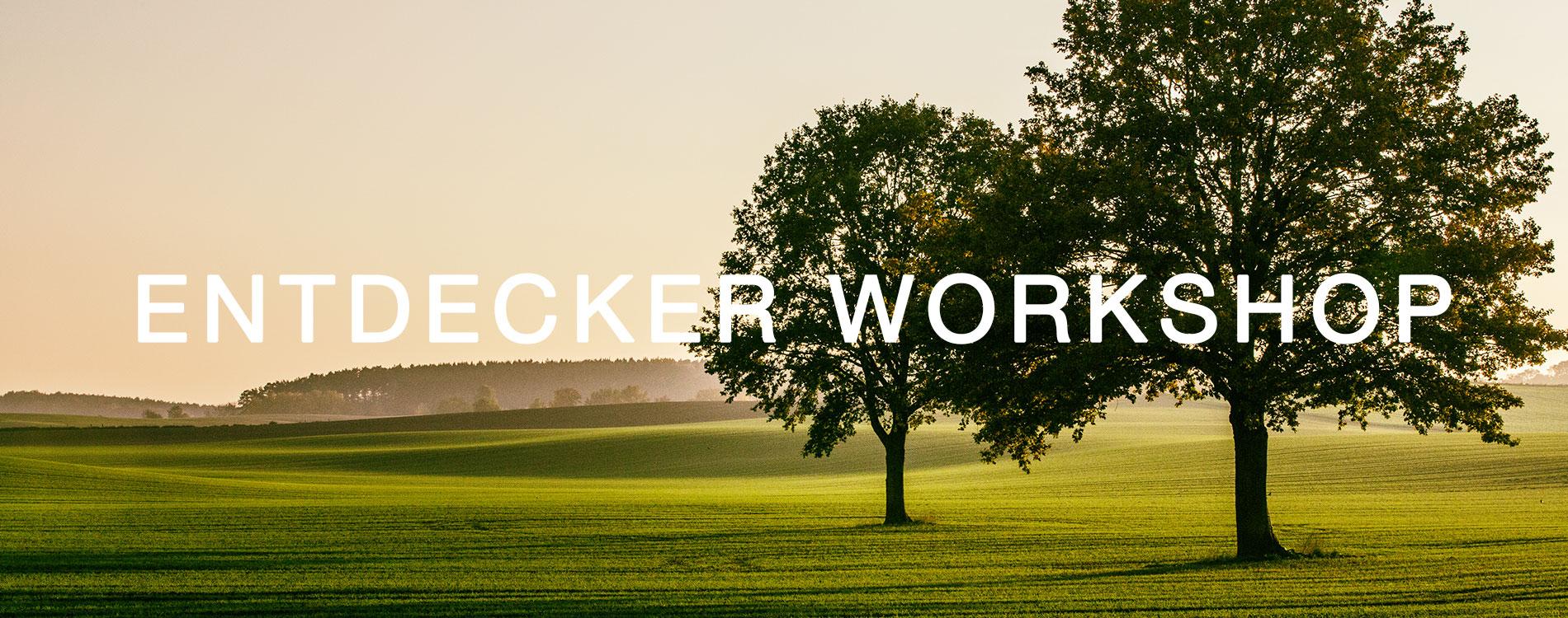 WM_Workshopbanner_entdecker.jpg