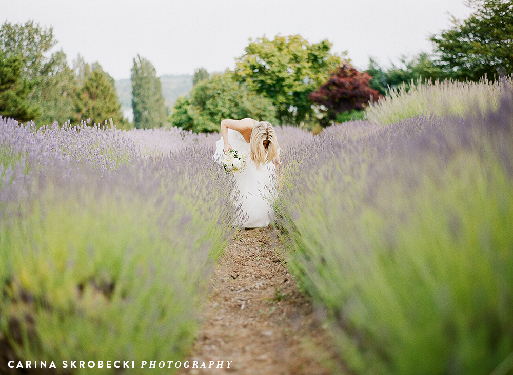 Bride in the lavender field   Photo courtesy of Carina Skrobecki Photography