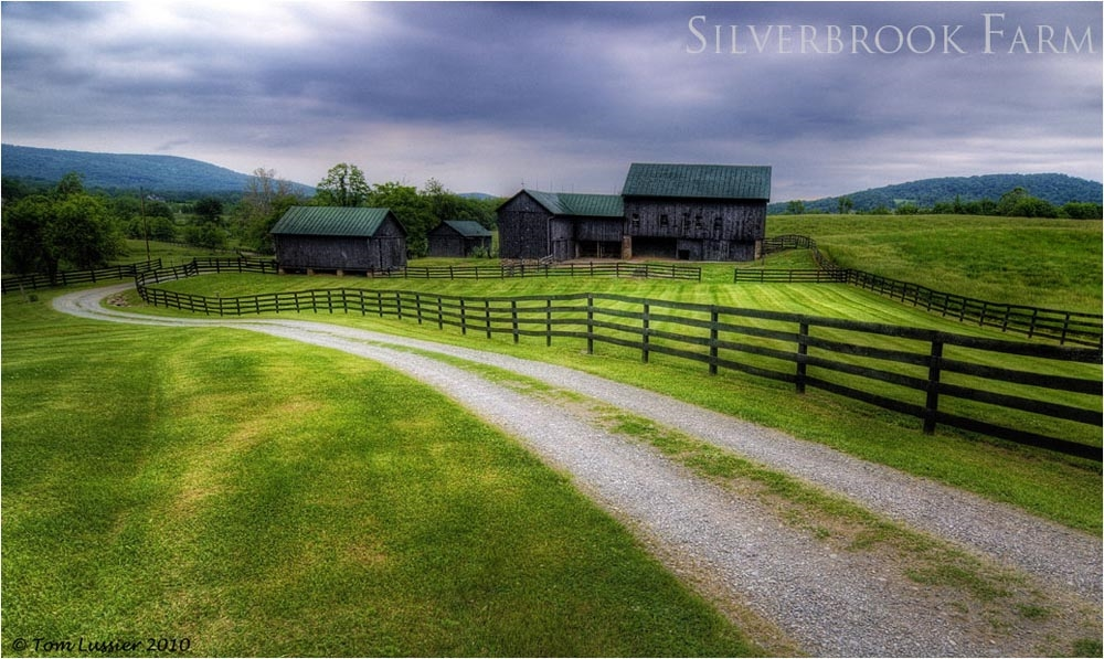 Silverbrook Farm, site of 2015 Friends fundraiser. Photograph by Tom Lussier