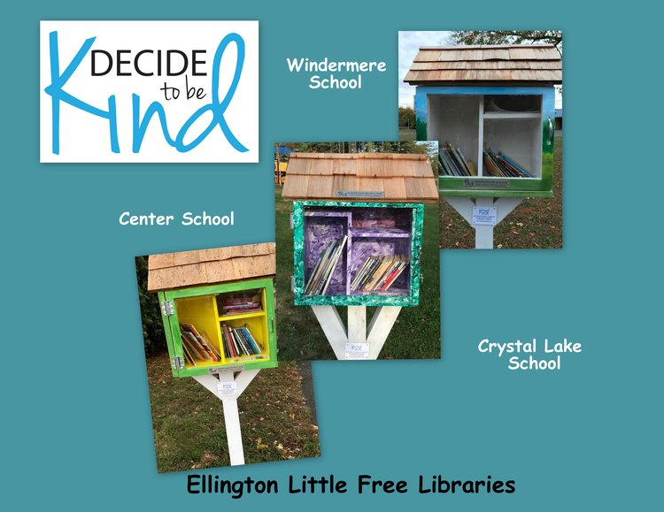 Little Free Libraries.jpg