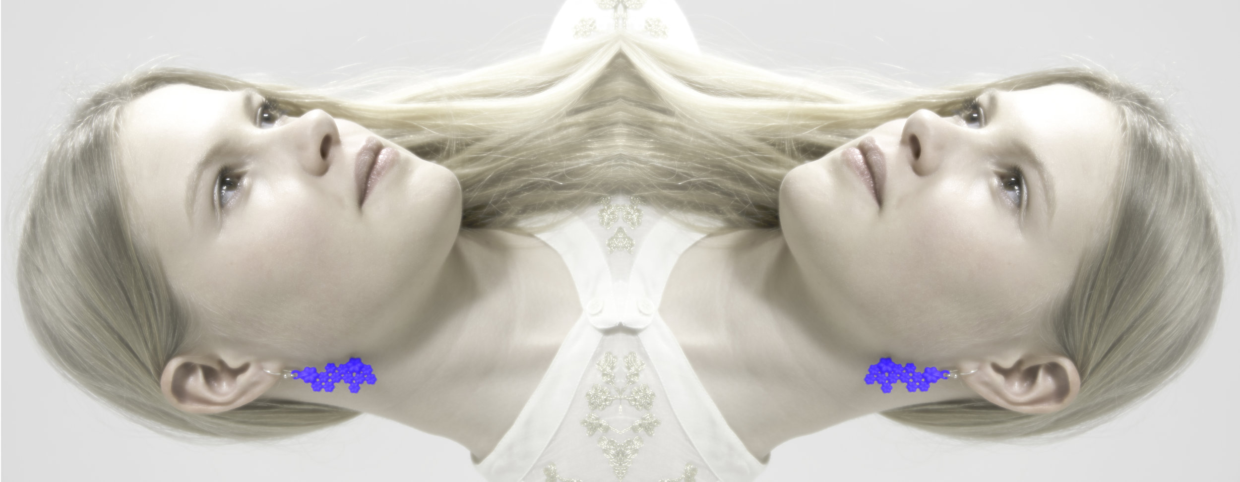 Hortensia-OB-Blauw-spiegel.jpg