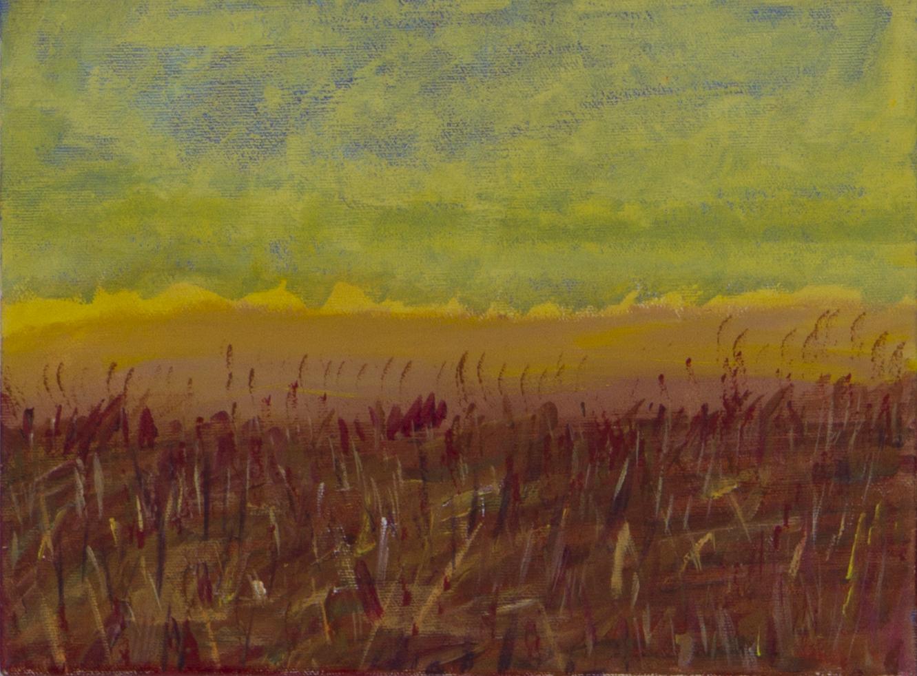 Field at Dunes