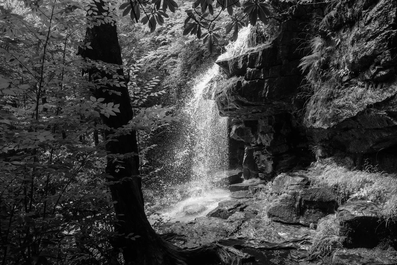 Jim Thorpe Camping-1278.jpg