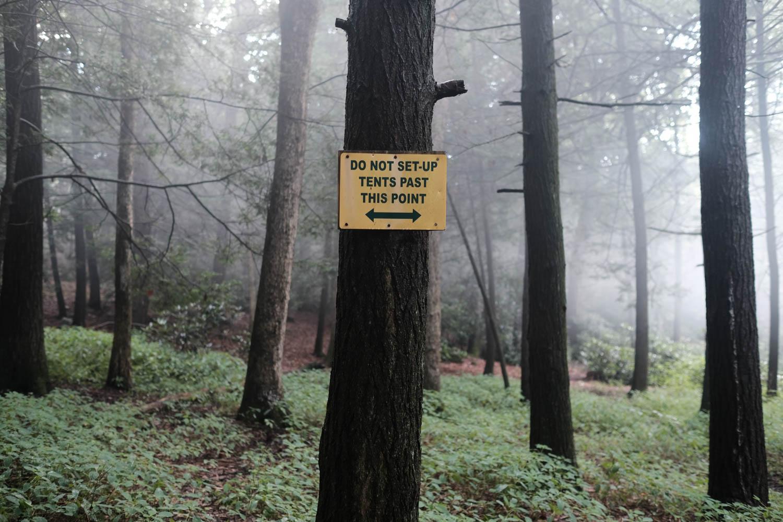 Jim Thorpe Camping-1233.jpg