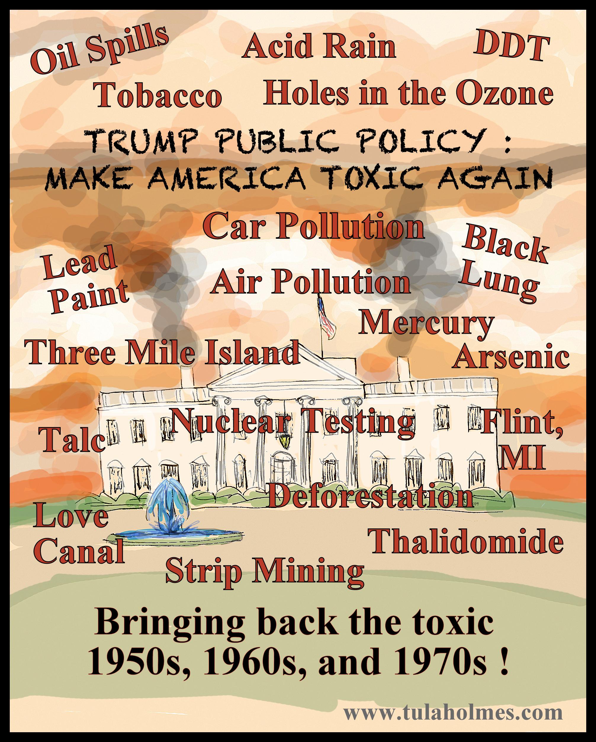 Make America Toxic Again- Copyright 2019