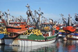 Boats+in+Talcahuano+2(1).jpeg