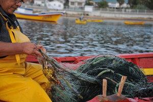Fishermen+in+Caleta+Coliumo+3(1).jpeg