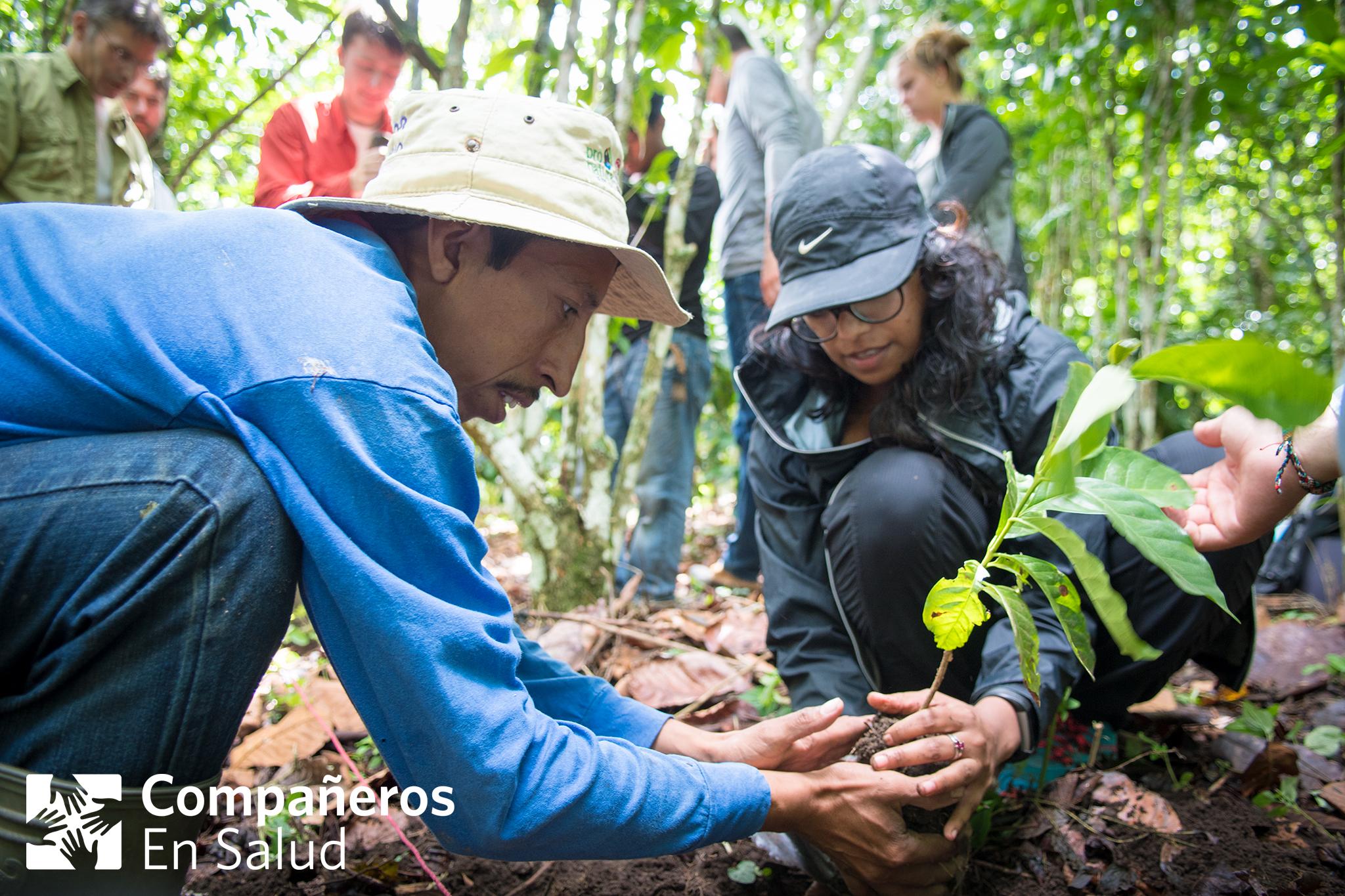 Rudy González Pérez le enseña a la doctora visitante Priya Kundu cómo plantar café, que es el principal producto agrícola de la región Sierra de Chiapas donde CES trabaja.