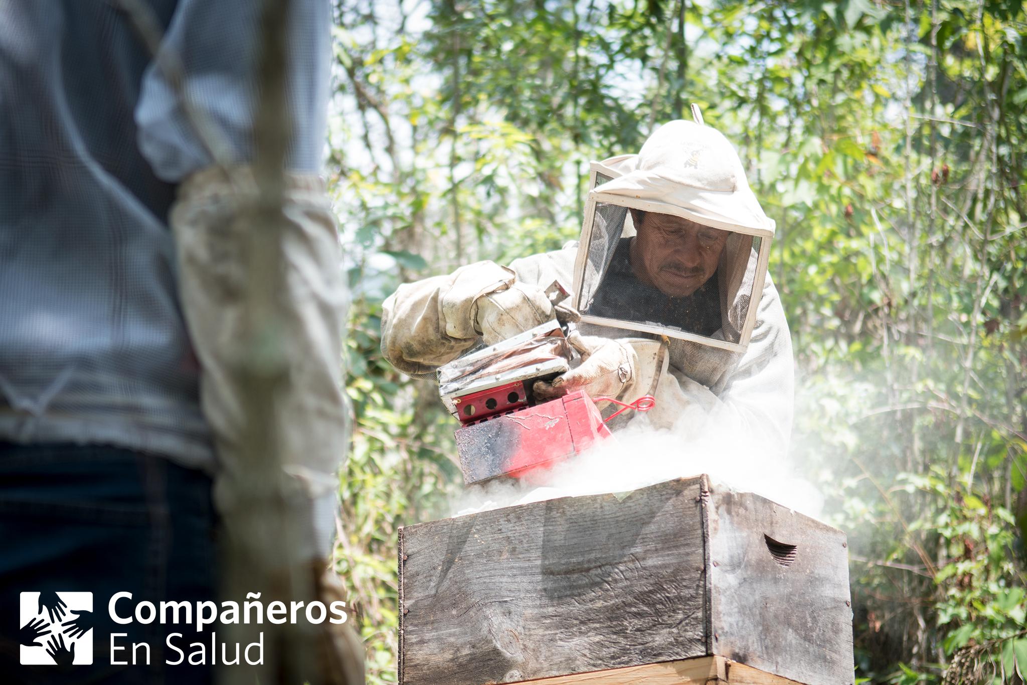 Don Ramiro, uno de los anfitriones de los estudiantes de medicina visitantes, les muestra el proceso de cosechar miel de sus panales cerca de la comunidad de Laguna del Cofre...