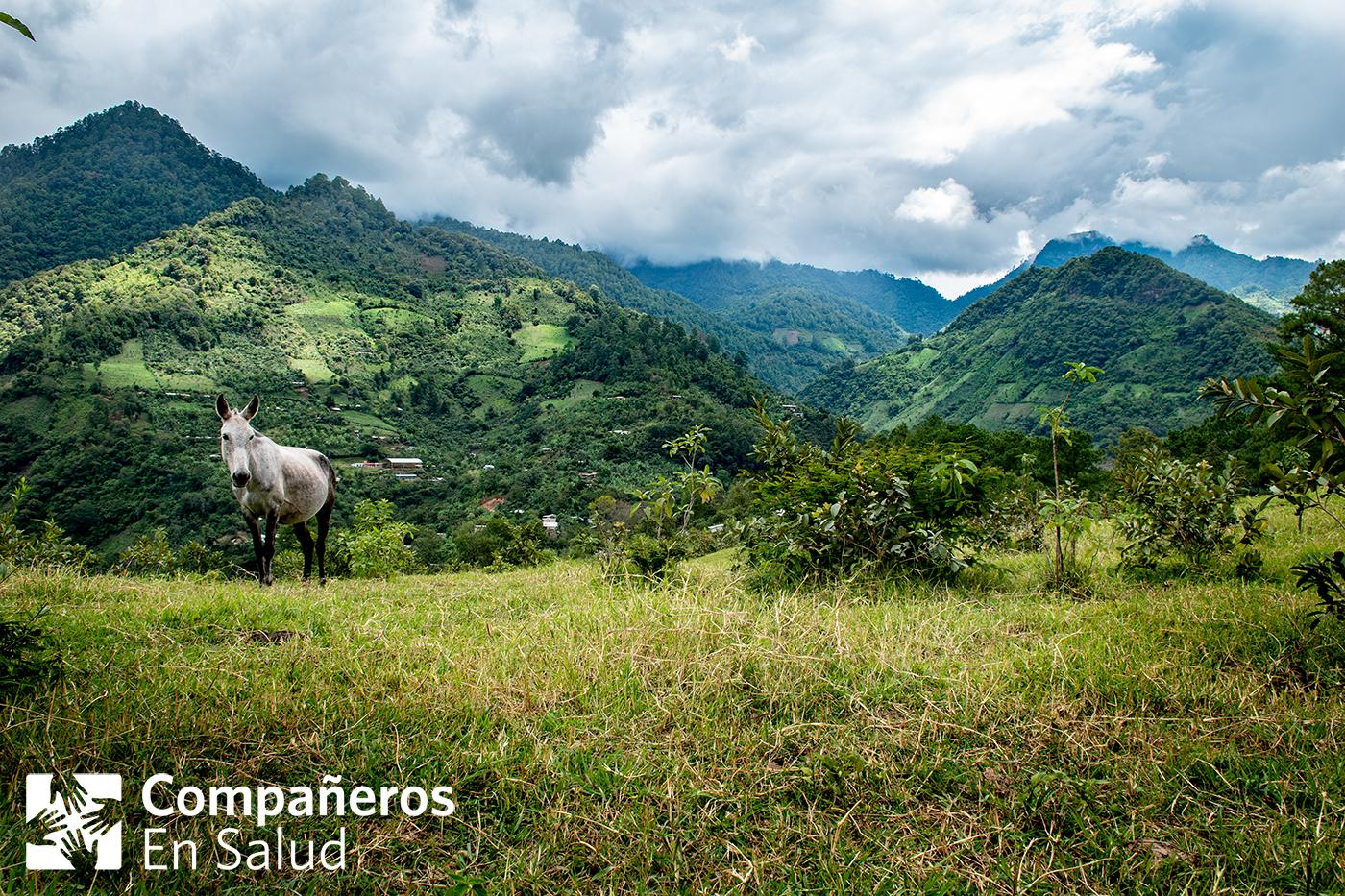 La comunidad rural en la región Sierra Madre de Chiapas donde viven Ernesto y su familia