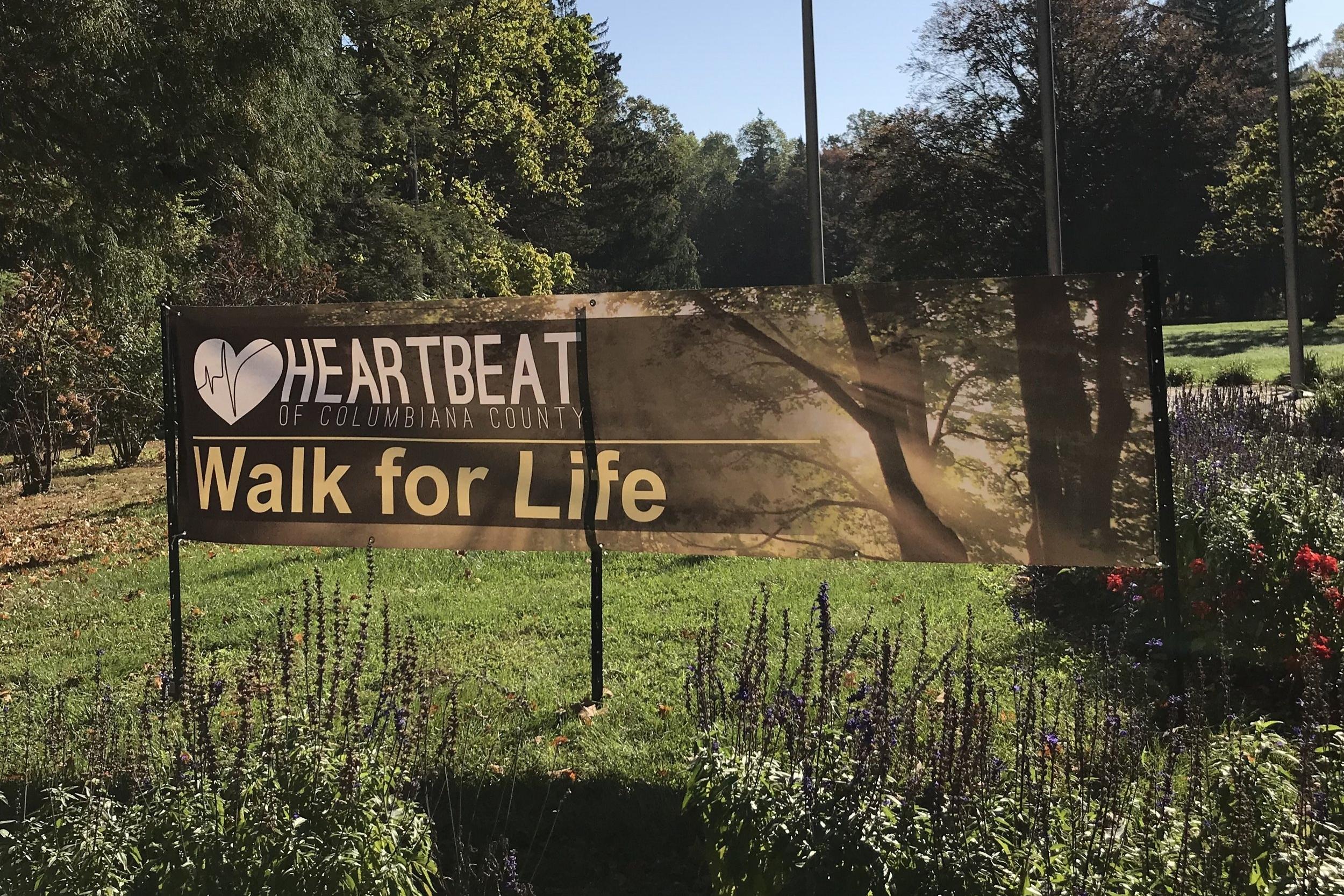 Walk for Life 2017-26.jpg