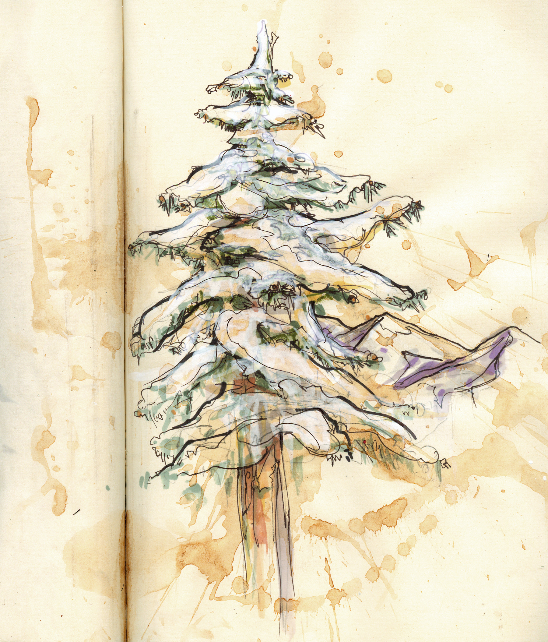 sheets_tree_sketch2.jpg