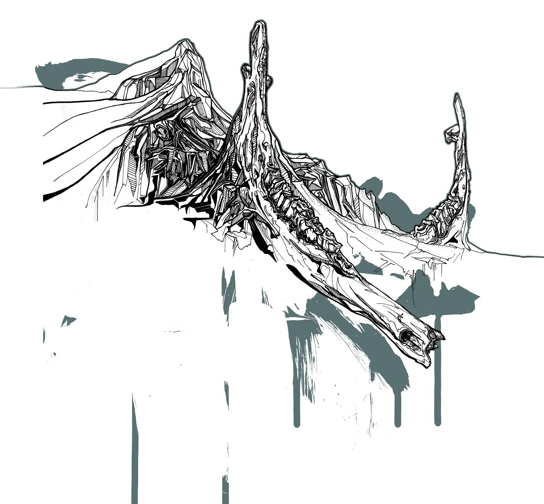 sheets_jawbone.jpg