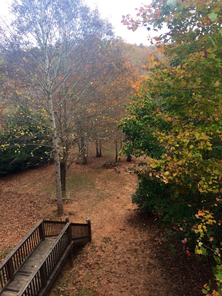 Fall in Georgia