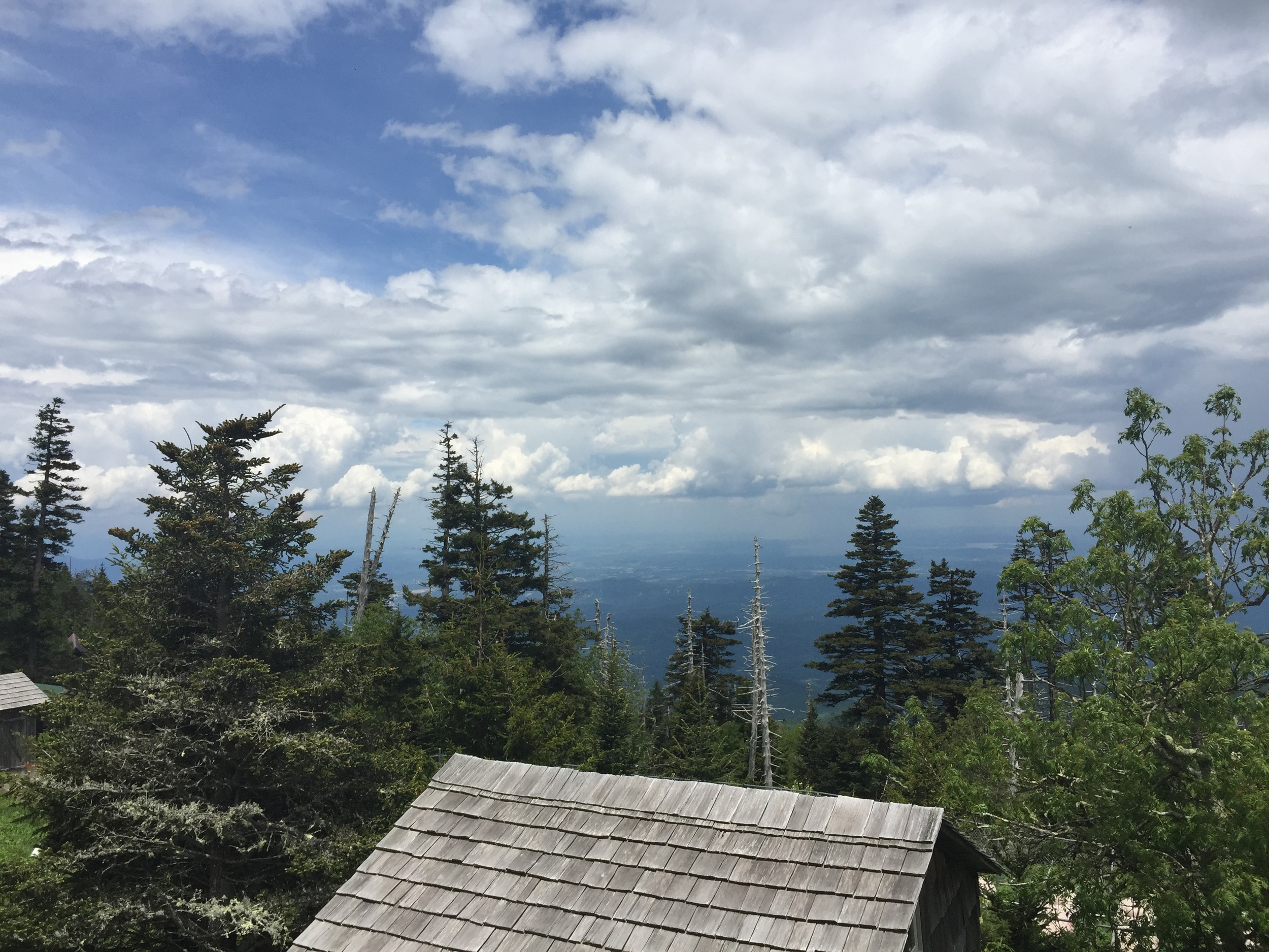 Mt. LeConte, Tennessee