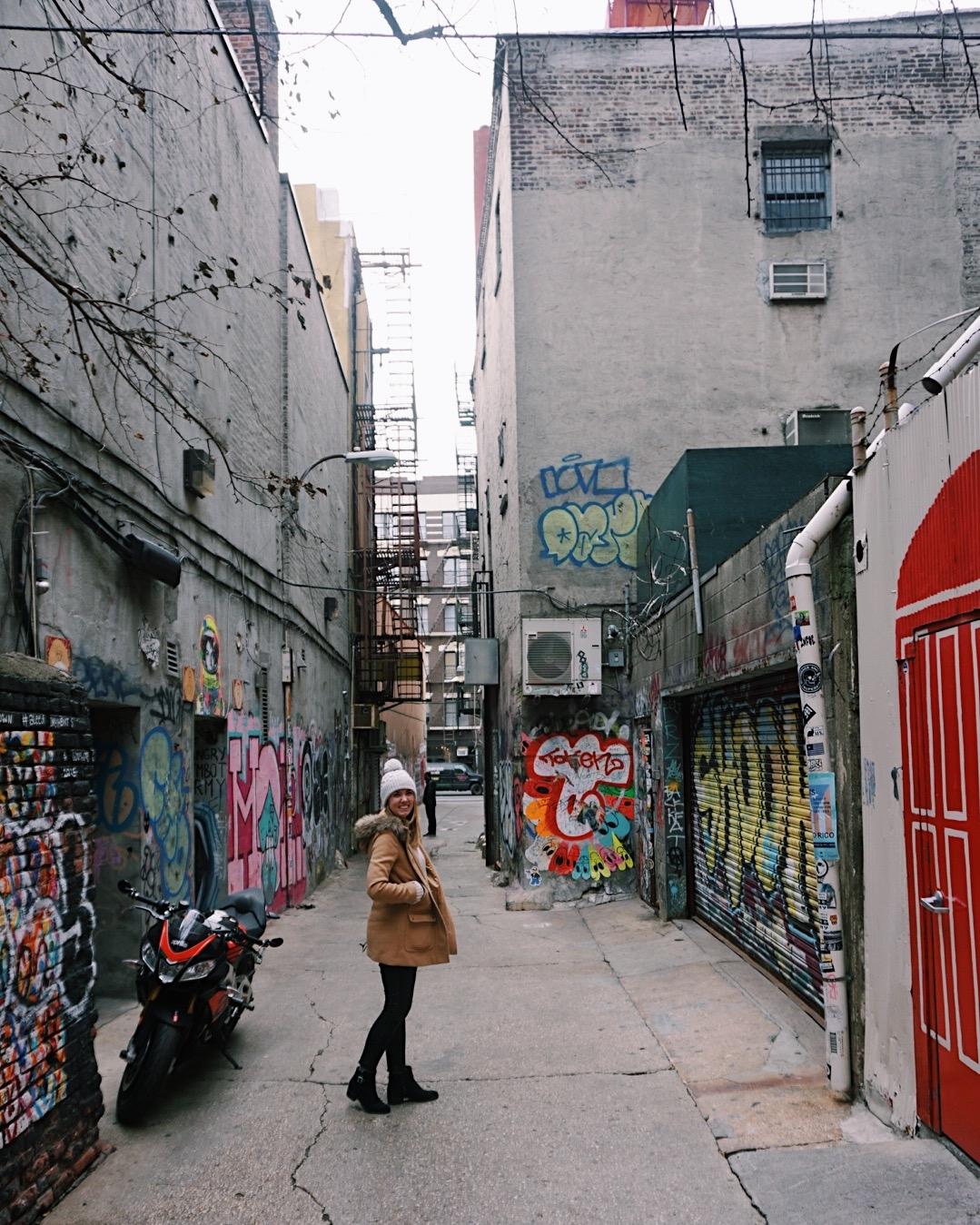 Freeman's Alley, New York City