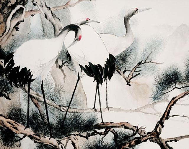 White Cranes.