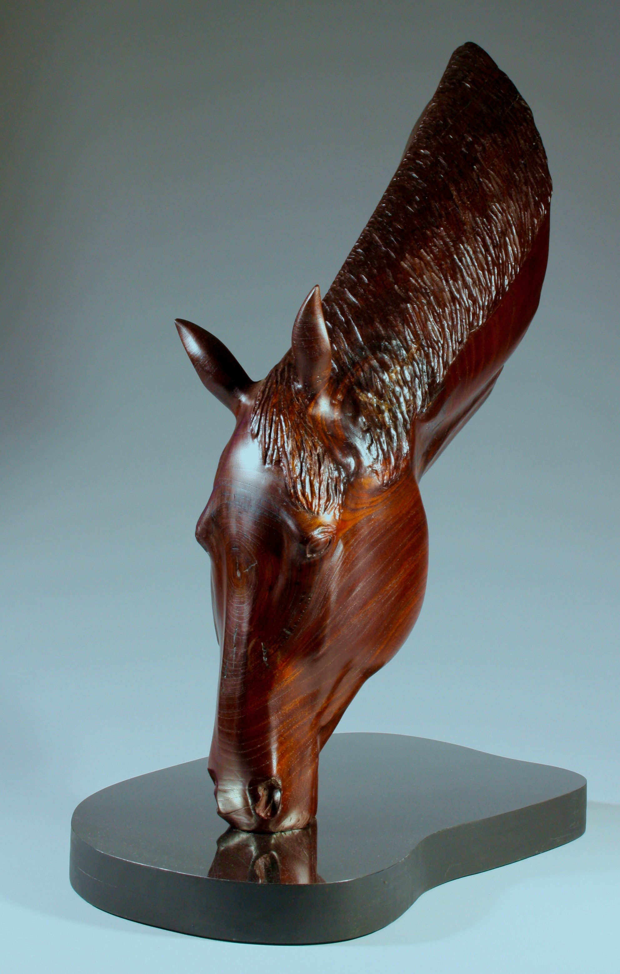 'Quenching his Thirst'    Wood:    Australian red cedar   Dimensions:  64x 30x45cm   Artist Statement:    The majesty of the horse, its power and intelligence are all reflected in its simple action of quenching his thirst.