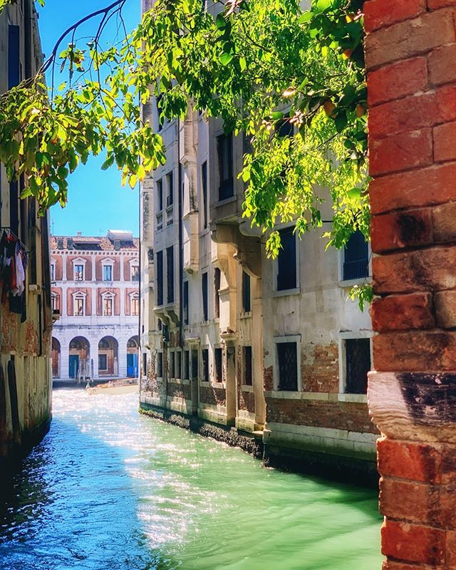 Fact: September is my favorite travel month ☀� The warm glow of summer still lingers, but without nearly the same intensity (and same goes for the number of tourists) ✈� Fall tip-toes in with cooler evenings and the beginning rustle of leaves; indeed, change is in the air �� . . . . . #venice #venezia #italytravel #travels #travelling #letsgosomewhere