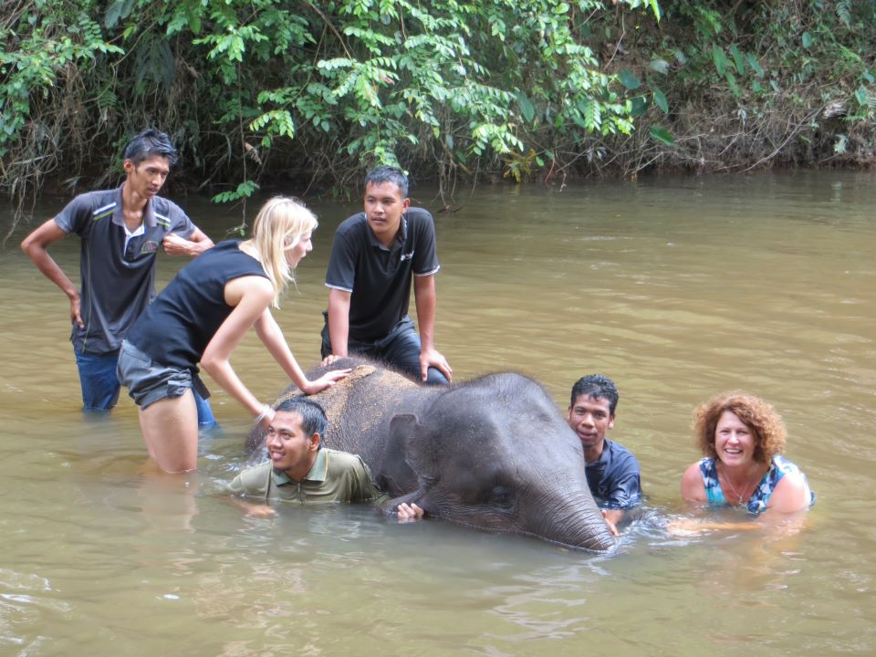 Downtime activities during dentistry in Kuala Lumpur