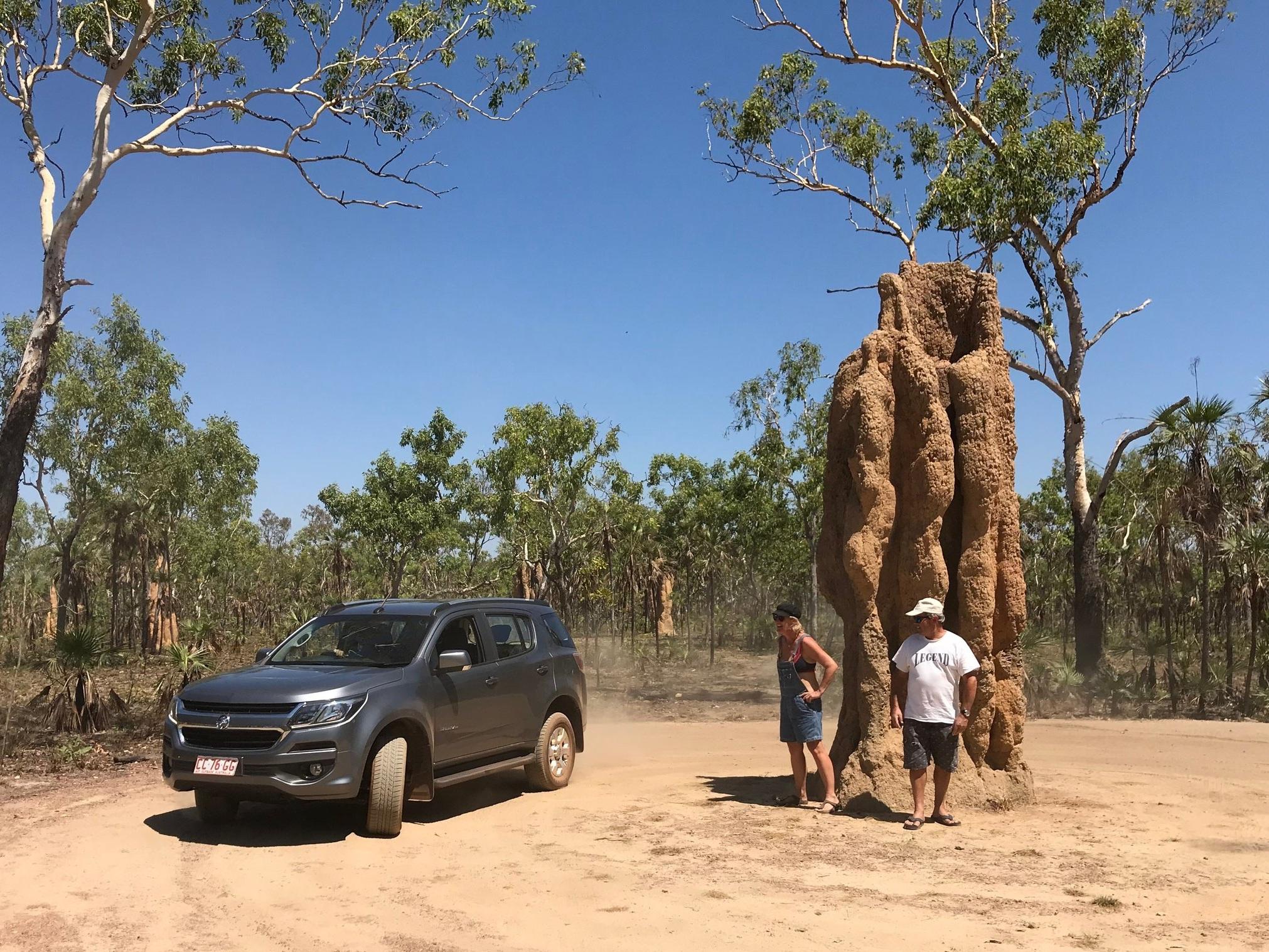Just a termite mound!