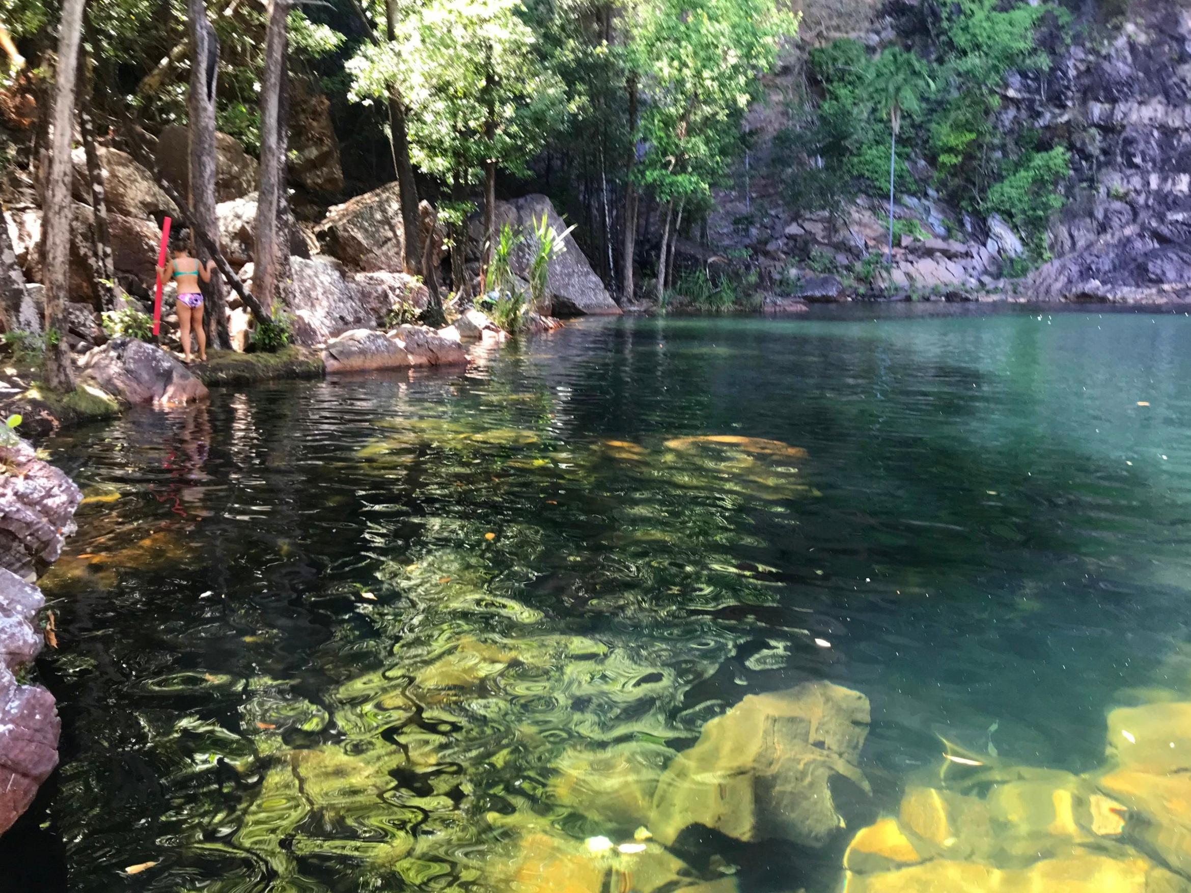 Tjaynera Falls swimming hole