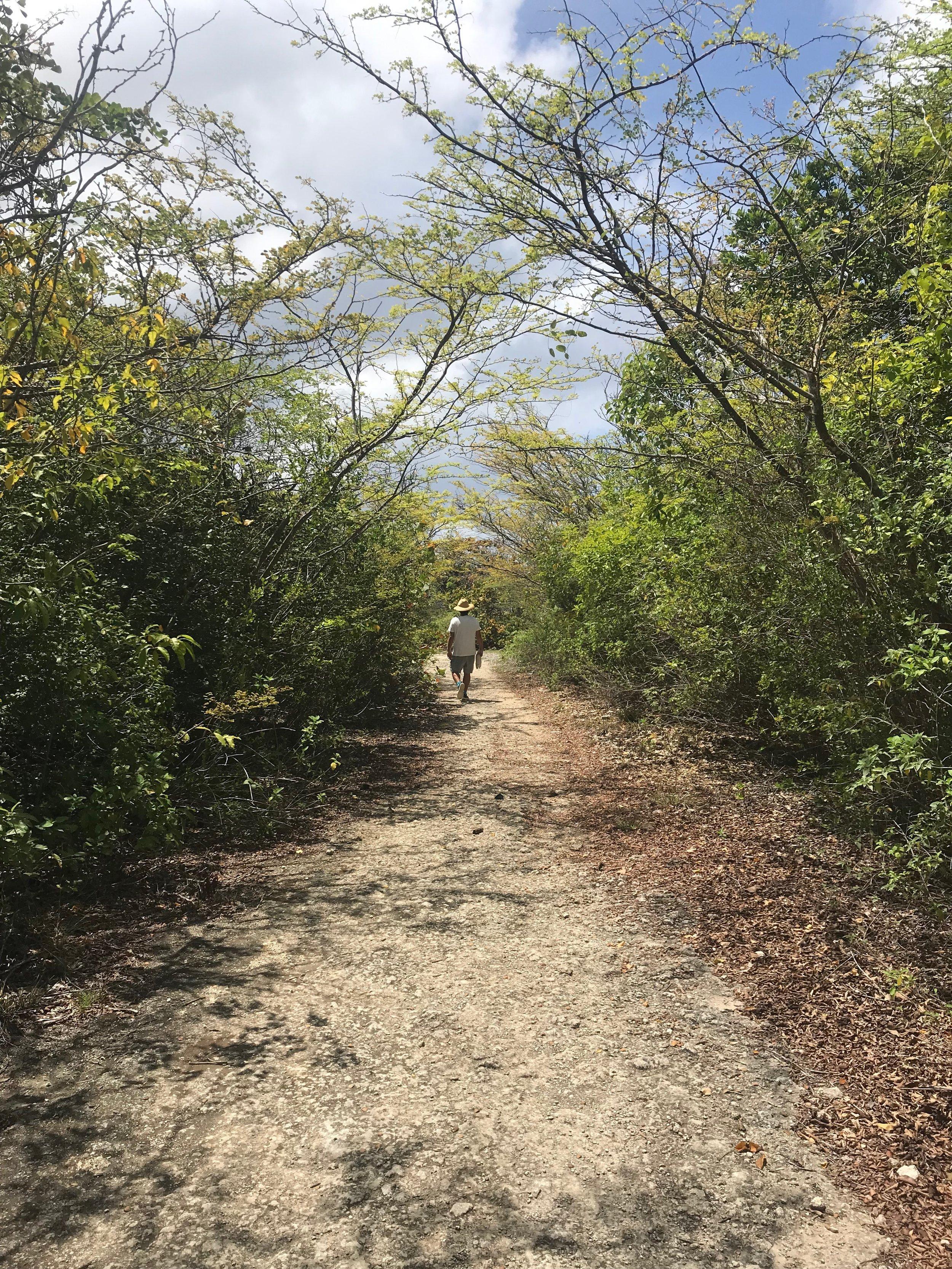Walking Sentier de Vieux Fort