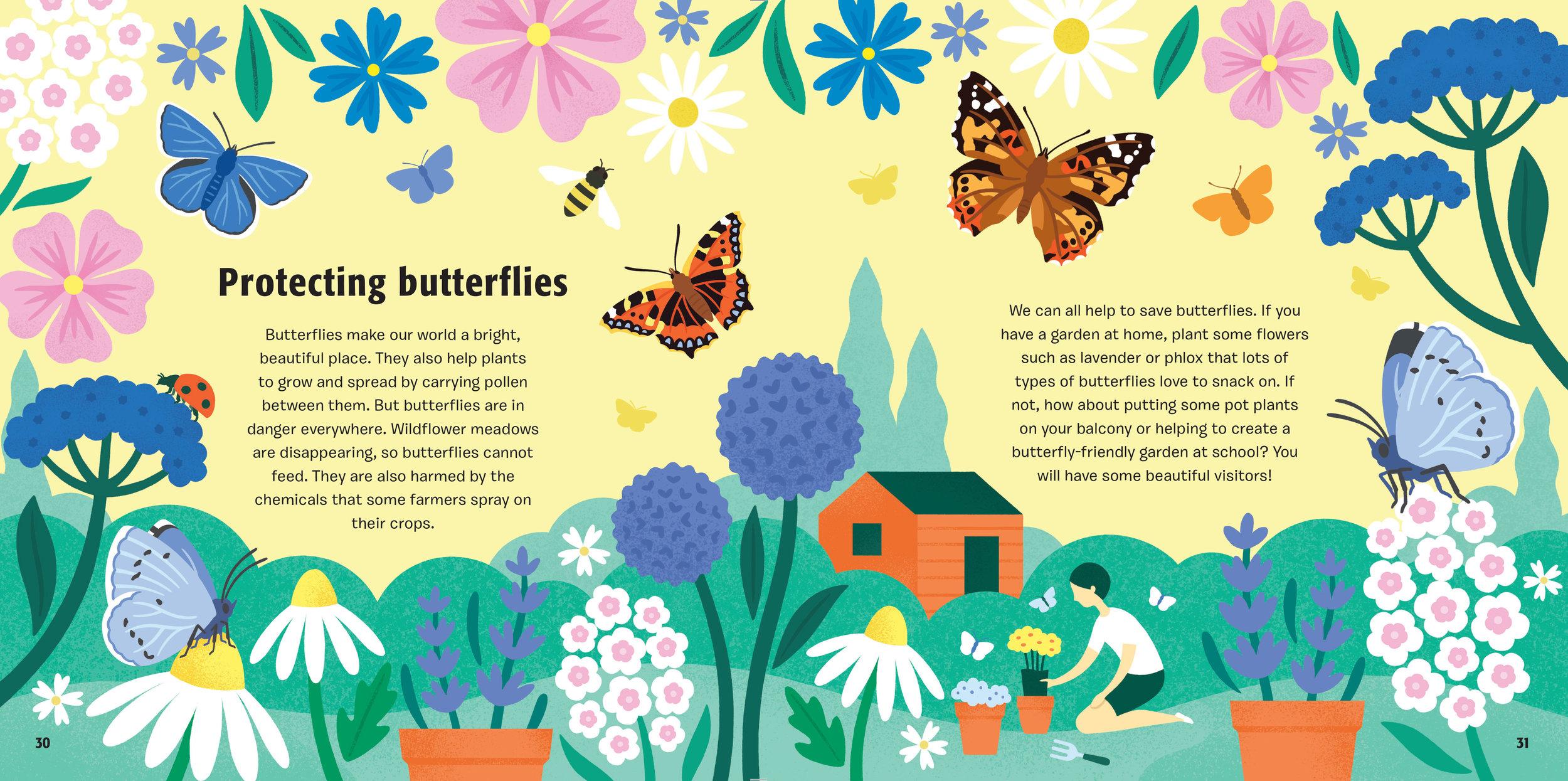 Butterfly-BLAD-30.jpg