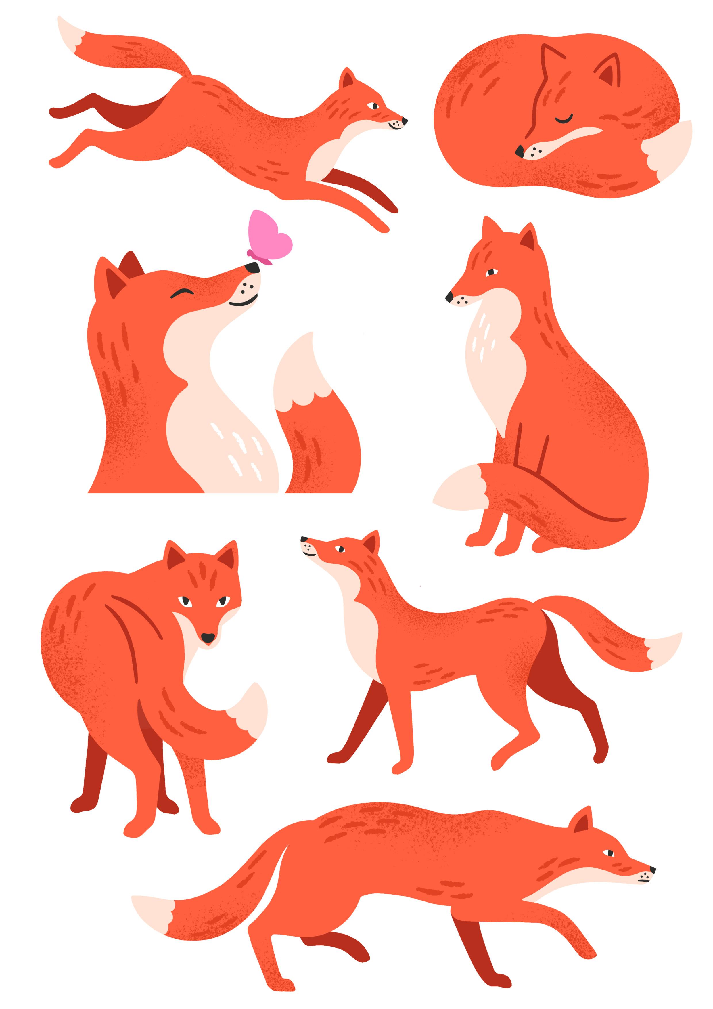 fox studies.jpg